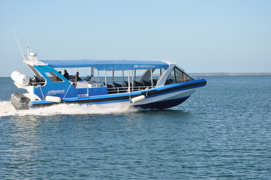 Review-Phillip-Island-Eco-Boat-Tour
