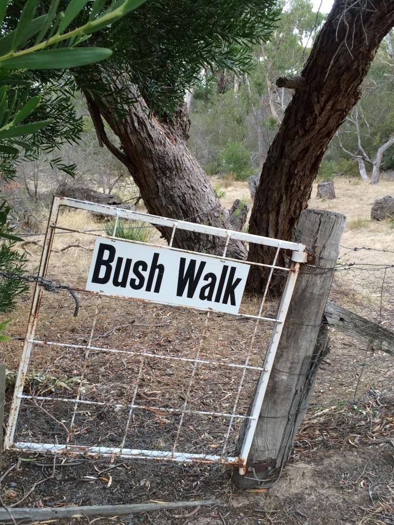 The bush walk Halls Haven Resort, the Grampians, Victoria