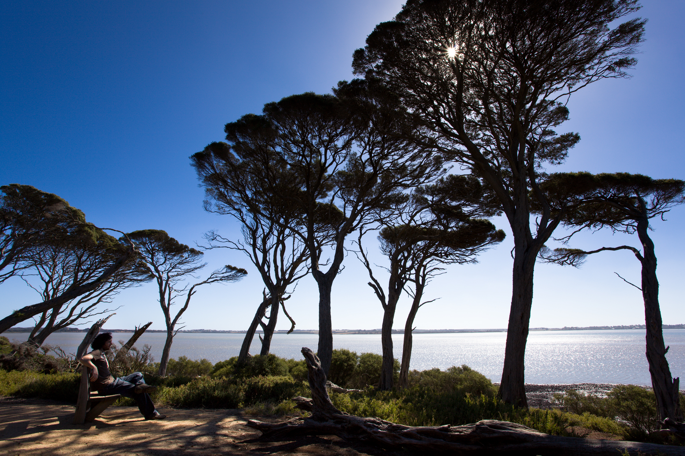 Norfolk Island - Wikipedia 222 gallery phillip island