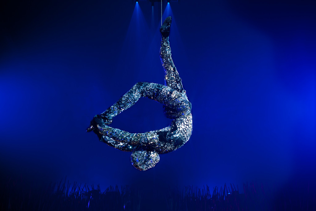 Crystal Man-Cirque- du- Soleil's Totem. OSA Images / Costumes: Kym Barrett / ©2010 Cirque du Soleil Inc.