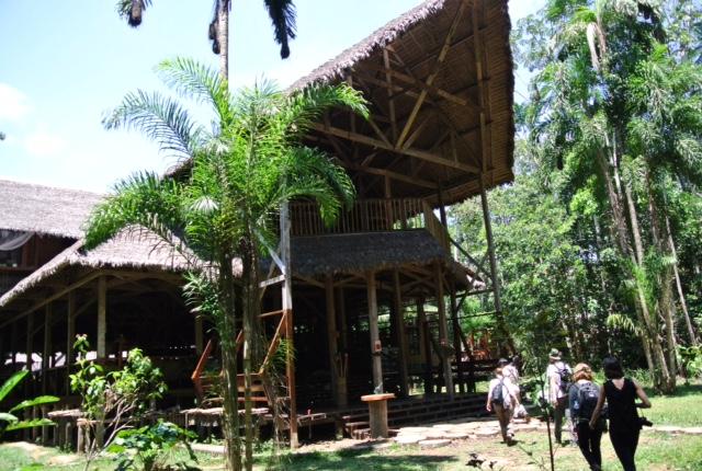 The Peruvian Amazon's Refugio Amazonas