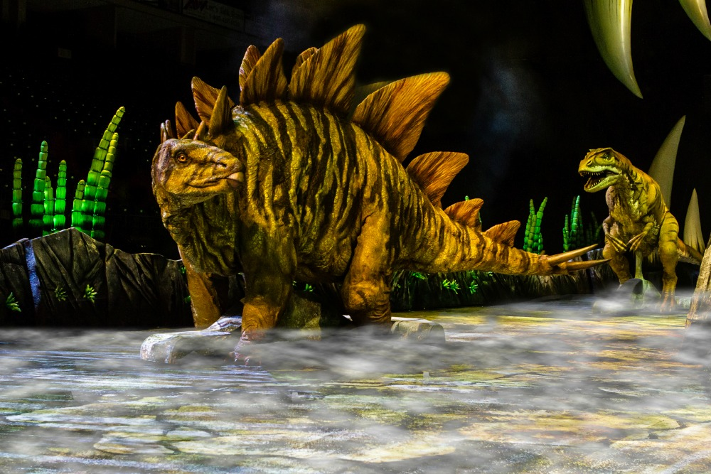 The Stegosaurus and Allosaurus in action. Image courtesy on Global Creatures. Photographer Patrick-Murphy
