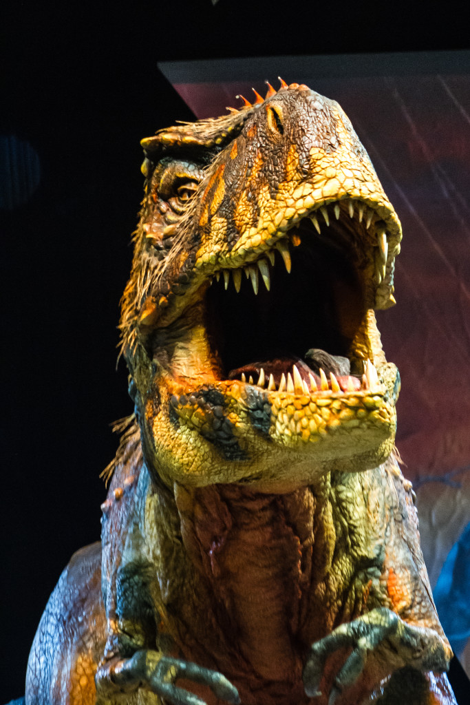 One of the greatest roars of the night came for the T-Rex. Image courtesy on Global Creatures. Photographer Patrick-Murphy