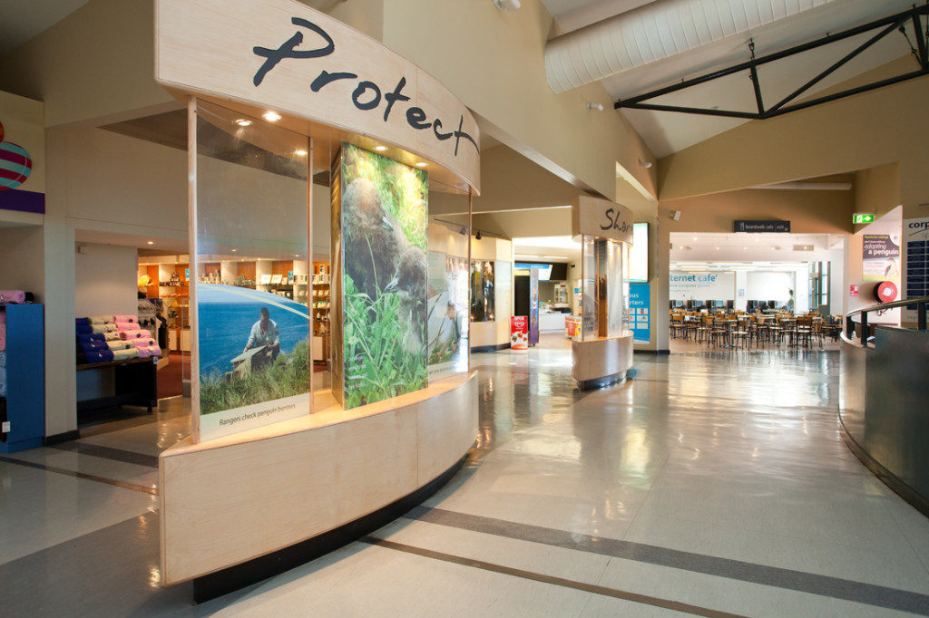 The tour starts in the Information Centre. Image courtesy of Phillip Island Nature Parks.