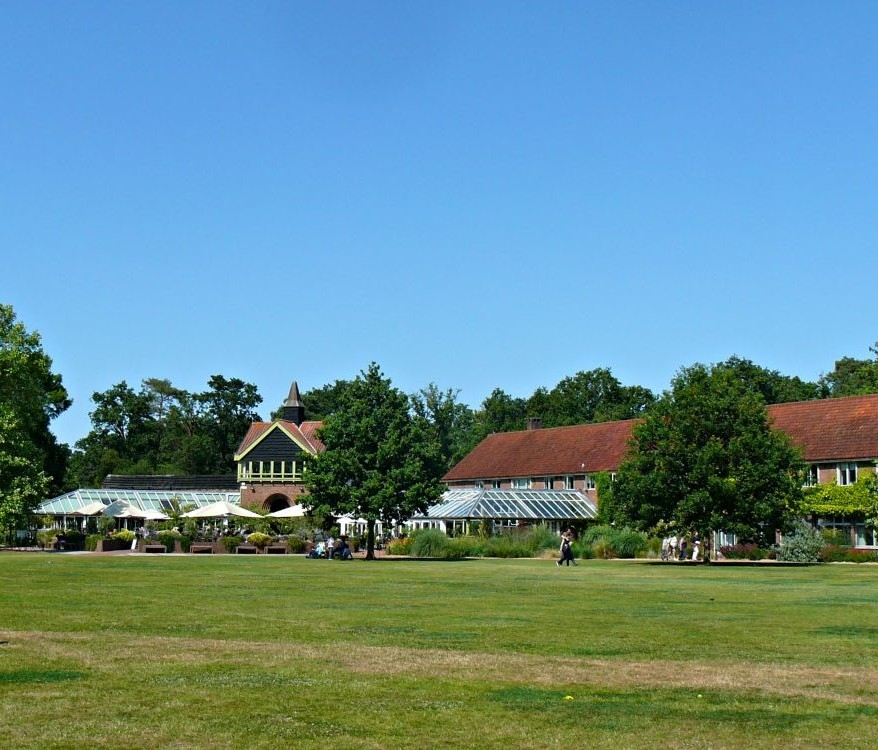 The green expanse of Wisley with restaurants in the background.