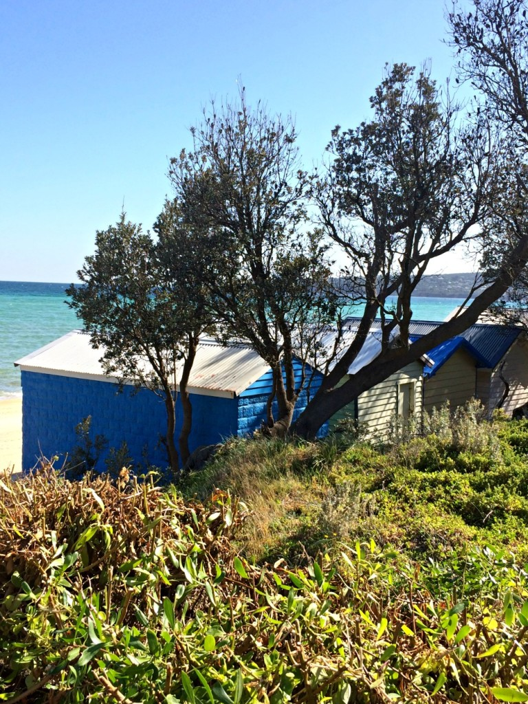 The views from the Dromana foreshore walk
