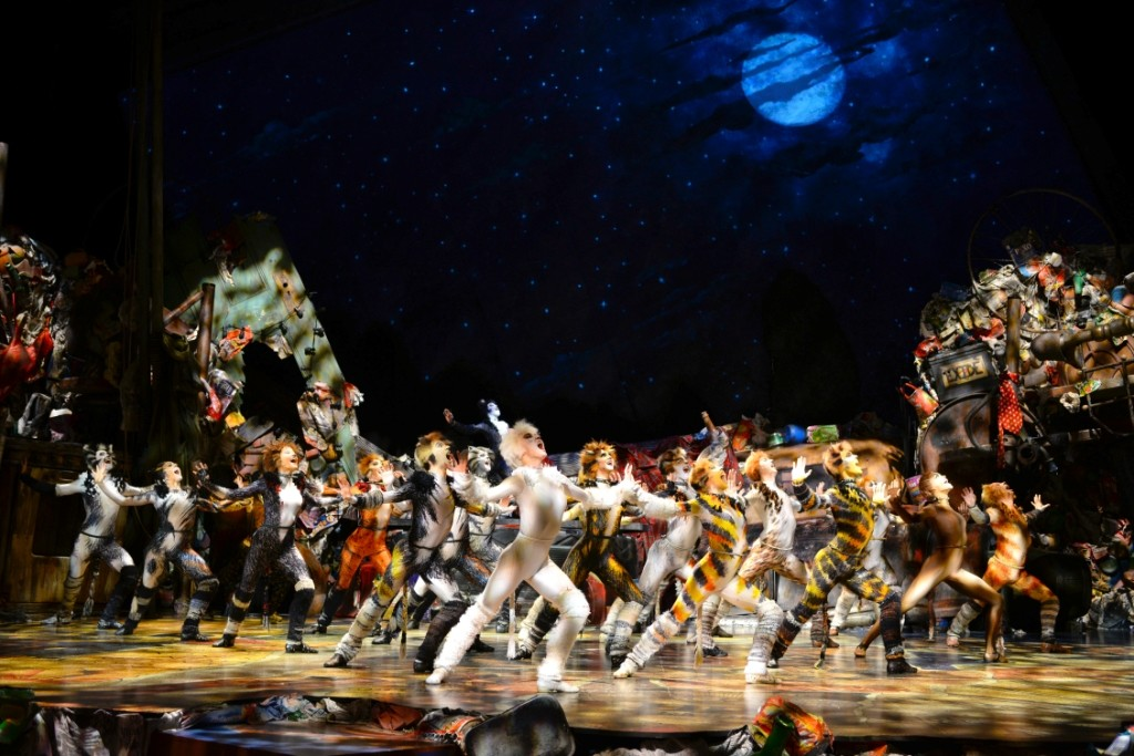 The cast of CATS