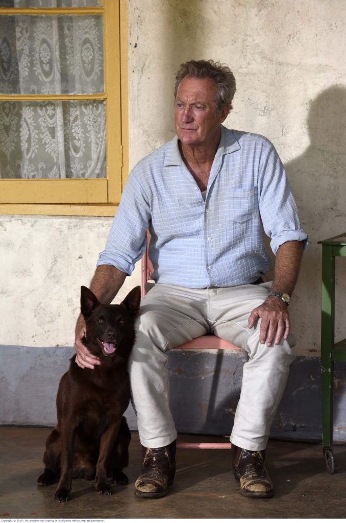 Bryan Brown gives a wonderful performance in Red Dog True Blue.