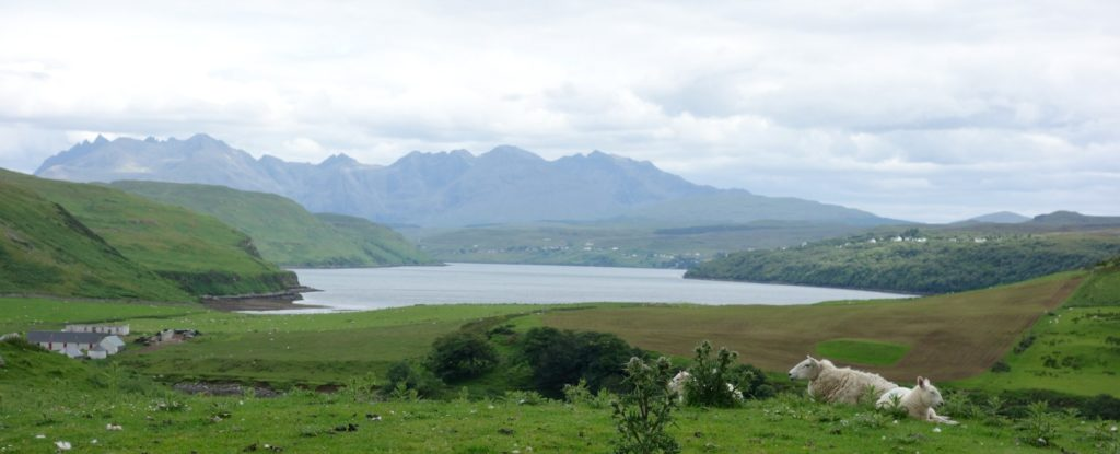 Joining Skye Minibus Tours' meant I could sit back and enjoy Skye's many tourist attractions.