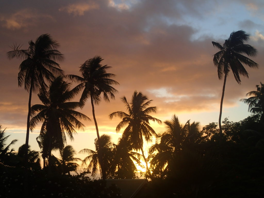 One of the views from the Fiji fishing village we visited.